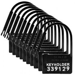 10 Pack of Locks for Chastity Devices by Master Series